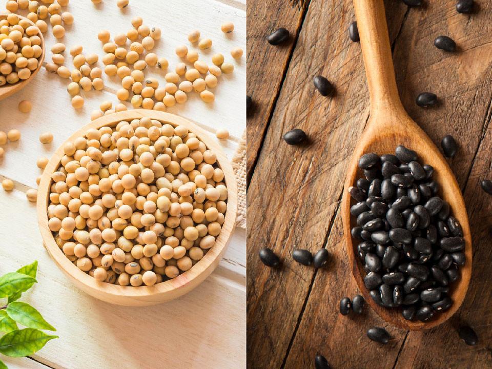 黑豆黃豆營養大比拚,誰才是豆中之王?大豆功效有哪些?