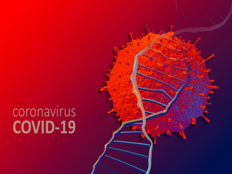 新冠肺炎解謎:基因序列定位找出病毒起源? 還是預測變異?